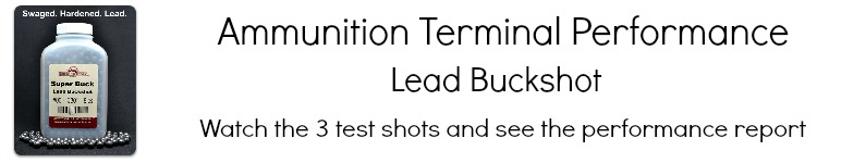 Buckshot Video